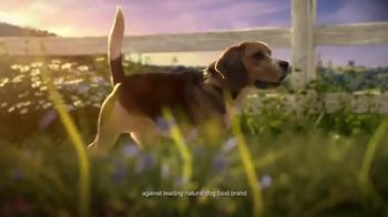 Hill's Ideal Balance Dog Food TV Spot, 'Balanced Ingredients' - Thumbnail 1