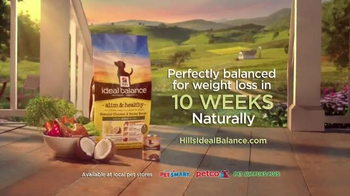 Hill's Ideal Balance Dog Food TV Spot, 'Balanced Ingredients' - Thumbnail 10