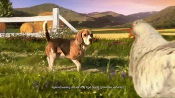 Hill's Ideal Balance Dog Food TV Spot, 'Balanced Ingredients' - Thumbnail 2