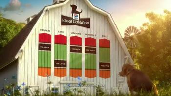 Hill's Ideal Balance Dog Food TV Spot, 'Balanced Ingredients' - Thumbnail 4