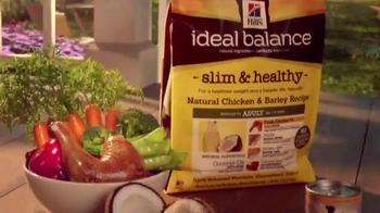 Hill's Ideal Balance Dog Food TV Spot, 'Balanced Ingredients' - Thumbnail 7