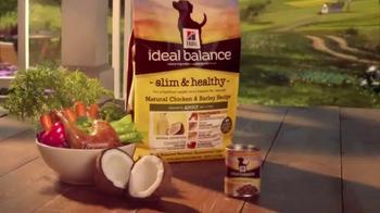 Hill's Ideal Balance Dog Food TV Spot, 'Balanced Ingredients' - Thumbnail 8