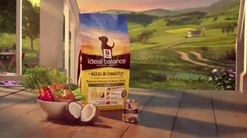 Hill's Ideal Balance Dog Food TV Spot, 'Balanced Ingredients' - Thumbnail 9
