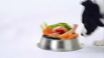 Wellness Pet Food Core TV Spot, 'Why Wellness? - Thumbnail 4