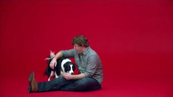 Milk-Bone Brushing Chews TV Spot, 'Ted with a Twist' - Thumbnail 9