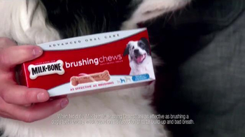 Milk-Bone Brushing Chews TV Spot, 'Ted with a Twist' - Thumbnail 6