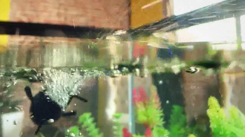 Lil' Fishys TV Spot - Thumbnail 8