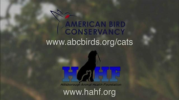 Hillsborough Animal Health Foundation TV Spot, 'Bird Conservation' - Thumbnail 8