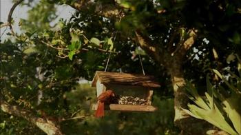 Hillsborough Animal Health Foundation TV Spot, 'Bird Conservation' - Thumbnail 1