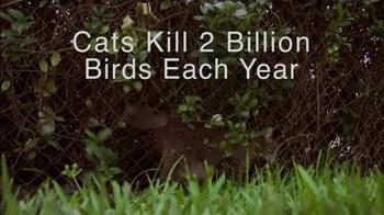 Hillsborough Animal Health Foundation TV Spot, 'Bird Conservation' - Thumbnail 5