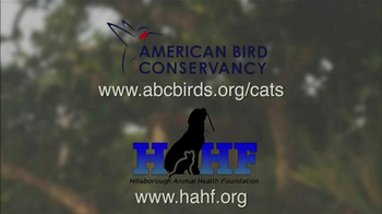 Hillsborough Animal Health Foundation TV Spot, 'Bird Conservation' - Thumbnail 7