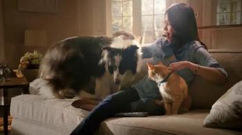 PetSmart TV Spot, 'Fleas & Tick Solutions' - Thumbnail 7
