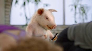 GEICO TV Spot, 'Yoga' - 3081 commercial airings