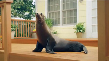 Thompson's Water Seal Waterproofing Stain TV Spot, 'Seal' - Thumbnail 4