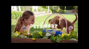 PetSmart Basket of Savings TV Spot