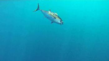 Yo-Zuri Fishing TV Spot, 'Why We are Obsessed' - Thumbnail 6