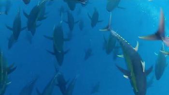 PENN International V 50VSW Offshore Trolling Reel TV Spot, 'Confidence' - Thumbnail 3