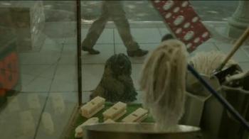 Dr Pepper TV Spot, 'Mop Dog' - Thumbnail 3