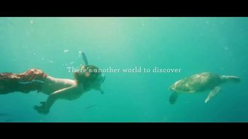 Princess Cruises 50th Anniversary Sale TV Spot, 'Turtles' - 3601 commercial airings