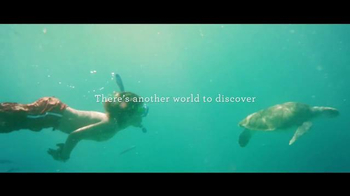 Princess Cruises 50th Anniversary Sale TV Spot, \'Turtles\'