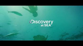 Princess Cruises 50th Anniversary Sale TV Spot, 'Turtles' - Thumbnail 6