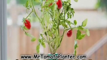 Mr. Tomato Planter TV Spot - Thumbnail 4