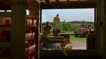 Pure Michigan TV Spot, 'Apples' - Thumbnail 5