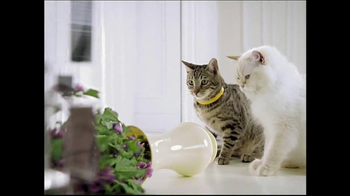Arm and Hammer Double Duty TV Spot, 'Double Trouble' - Thumbnail 9