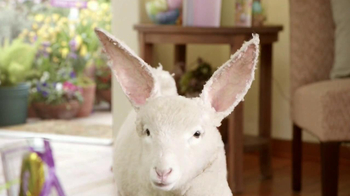 Kmart Easter Shoes TV Spot, 'Lamb-bit' - 757 commercial airings