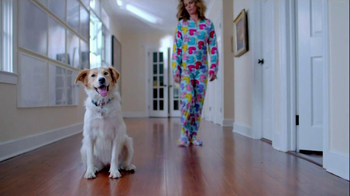 The Shelter Pet Project TV Spot, 'Dog Learns About Humans' - Thumbnail 3