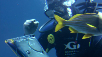 NCAA TV Spot, 'Fish Love March Madness' - Thumbnail 3