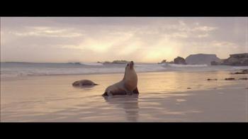 Tourism Australia TV Spot, 'Like Love' Song by Dewayne Everettsmith - Thumbnail 7