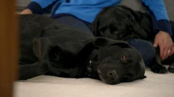 Bissell SpotBot Pet TV Spot, 'Black Labs' - Thumbnail 10