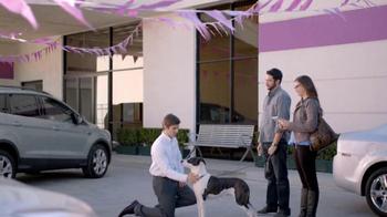 2013 Honda CR-V TV Spot, 'Growling Dog' - Thumbnail 1