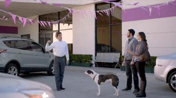 2013 Honda CR-V TV Spot, 'Growling Dog' - 487 commercial airings