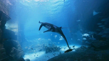 Atlantis TV Spot, 'Imagine: Last Week' - Thumbnail 3