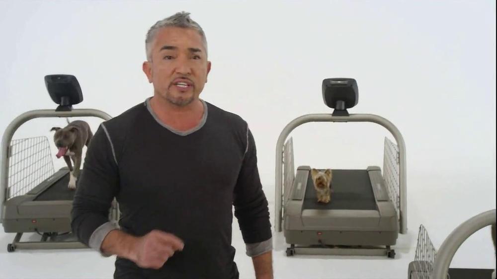 Pro-Form Dog Treadmill by Cesar Milan TV Commercial