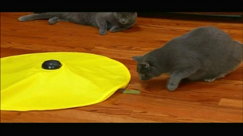 Cat's Meow TV Spot - Thumbnail 5