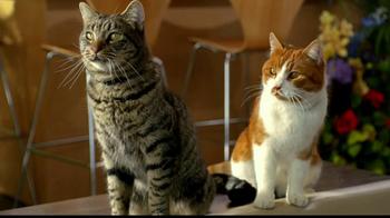 Tidy Cats Pure Nature Litter TV Spot, 'Flowers' - Thumbnail 1