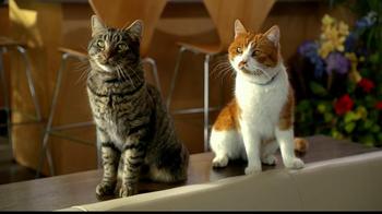 Tidy Cats Pure Nature Litter TV Spot, 'Flowers' - Thumbnail 7