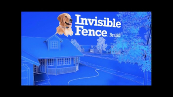 Invisible Fence TV Spot  - Thumbnail 1
