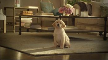 Glade TV Spot, 'Doggie Costumes'  - Thumbnail 1