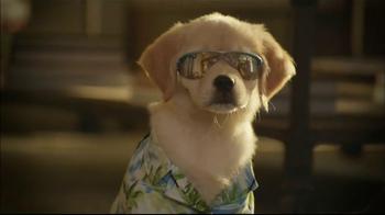 Glade TV Spot, 'Doggie Costumes'