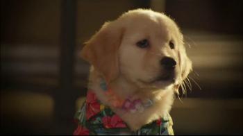 Glade TV Spot, 'Doggie Costumes'  - Thumbnail 5