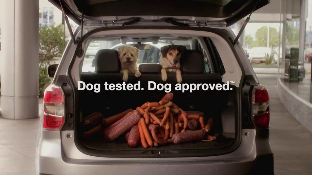 Subaru Forester Tv Commercial Dog Approved Trunk Ispot Tv