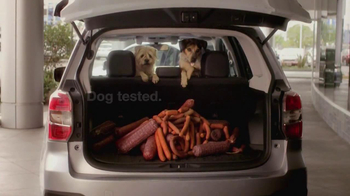 Subaru Forester TV Spot, 'Dog-Approved Trunk' - Thumbnail 6