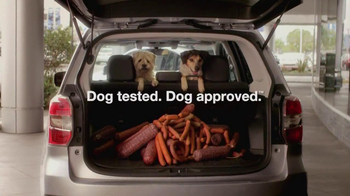 Subaru Forester TV Spot, 'Dog-Approved Trunk' - Thumbnail 7