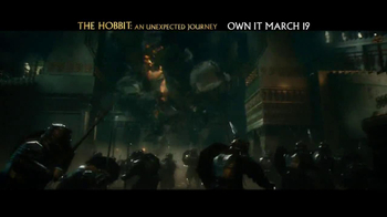 The Hobbit: An Unexpected Journey Blu-ray and DVD TV Spot, 'Own it Today' - Thumbnail 3