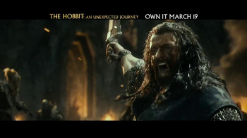 The Hobbit: An Unexpected Journey Blu-ray and DVD TV Spot, 'Own it Today' - Thumbnail 6