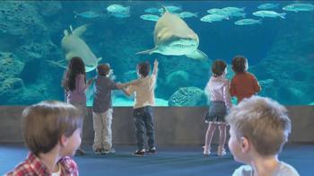 Thomas & Friends TV Spot, 'Shark Exhibit' - Thumbnail 8